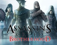 Assassins Creed Brotherhood Wide